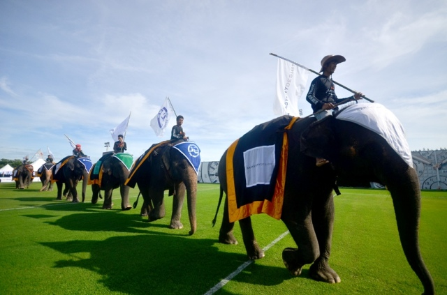 Opening Parade at the 2014 King's Cup Elephant Polo Tournament low res